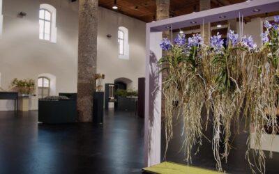 """""""Die Location ist großartig"""": Salzlager Hall als Schauraum für """"Virtuelle Ausstellung"""""""
